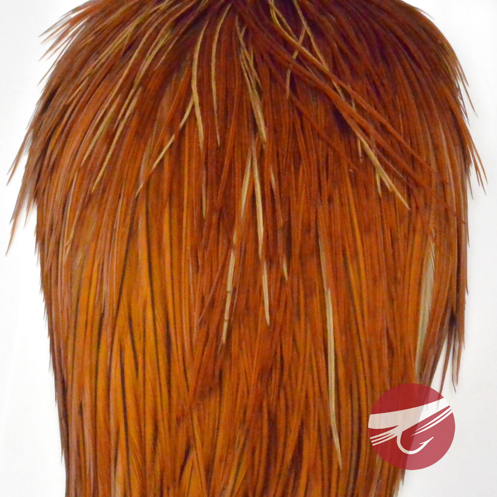 Angelsport-Fliegen-Bindematerialien Fly Tying Whiting Gold Rooster Saddle White dyed Coachman Brown #C