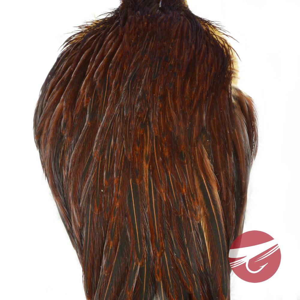 Angelsport-Köder, -Futtermittel & -Fliegen Angelsport-Artikel Fly Tying Whiting Gold Rooster Saddle White dyed Coachman Brown #C